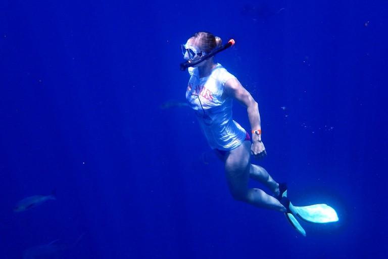 https://pixabay.com/en/swim-snorkel-dive-blue-sea-water-2733324/