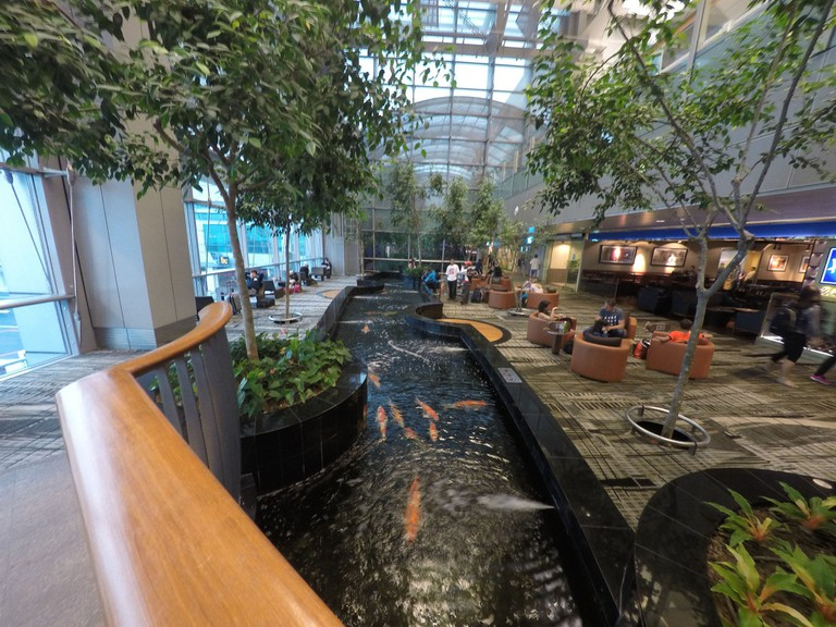 Take a breather at the many cosy lounges in Changi Airport