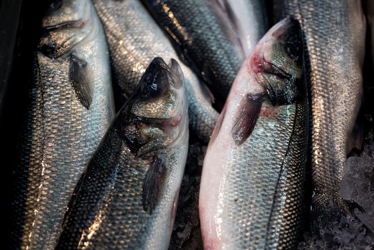 Fresh fish at Dolac market | © Sahas Dutta/Flickr