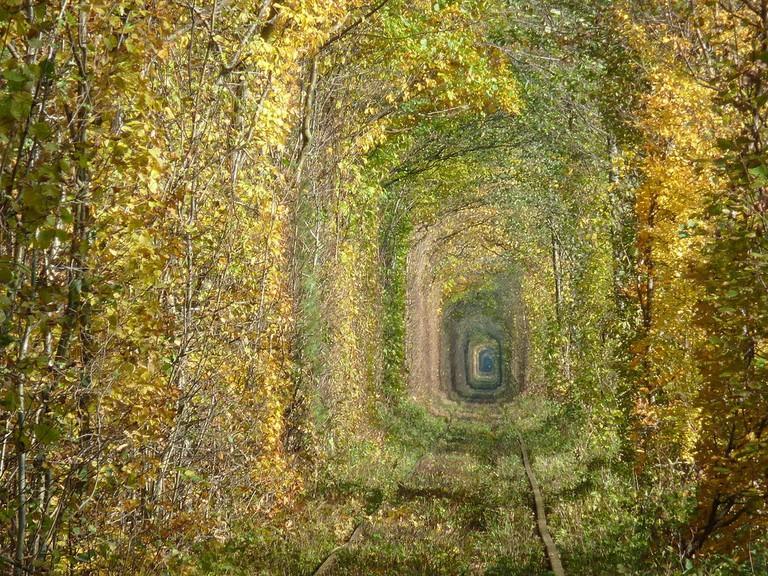 Осінь_у_Тунелі_кохання