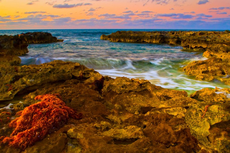 Fine Art Photography - Bahamian