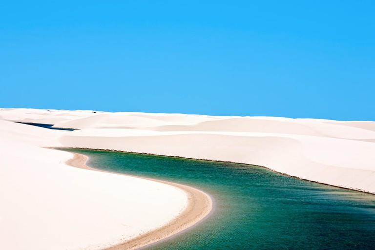 Brazil Desert