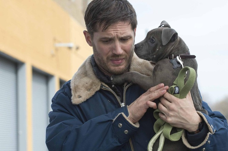 gallery_movies-the-drop-tom-hardy-puppy