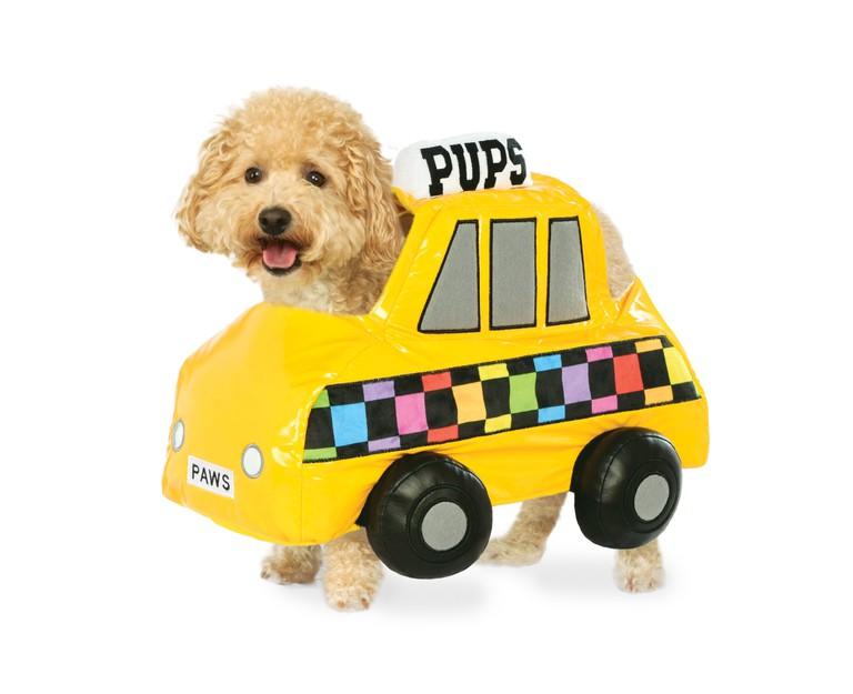 Image courtesy of Rubie's Pet Shop Boutique