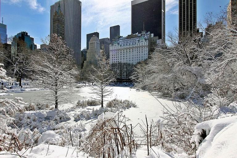 New York in the snow   Pixabay