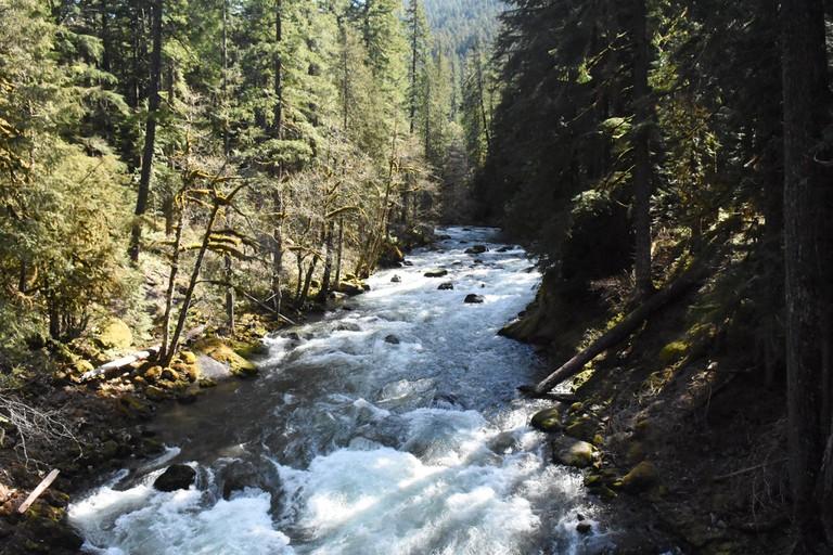 Ohanapecosh | © Mount Rainier National Park / Flickr