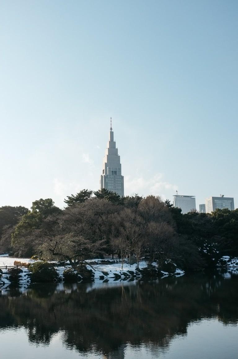 SCTP0104-SHINKAREVA-SHINJUKU-GYOEN6