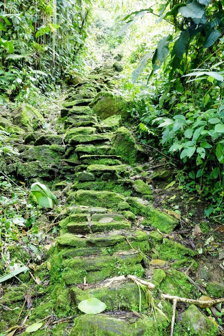 The Lost City, Colombia | © Ricard MC/Shutterstock