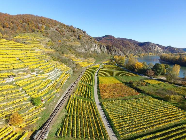 upper-rhine-valley-1030909_1280