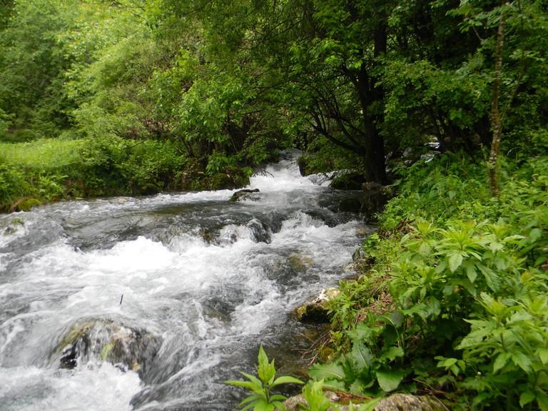 Vrelo_river_(Resava)2 copy