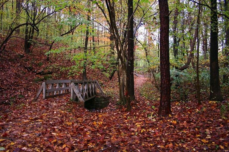 1024px-Bridge-wine-cellar-park_-_West_Virginia_-_ForestWander