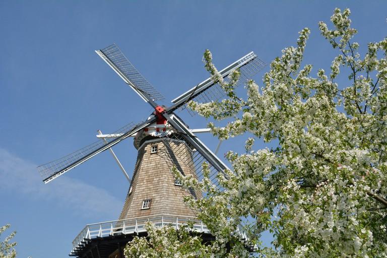 De Zwaan Windmill | © erikccooper/Flickr