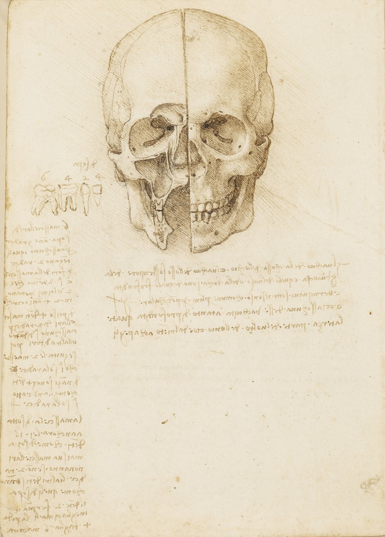 Leonardo da Vinci, The skull sectioned, 1489 | Royal Collection Trust / © Her Majesty Queen Elizabeth II 2018