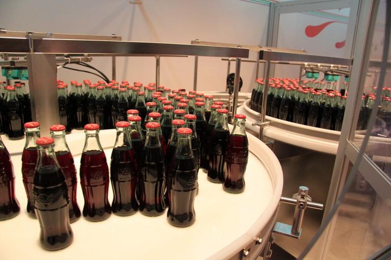 Mini Bottle Plant:Atlanta