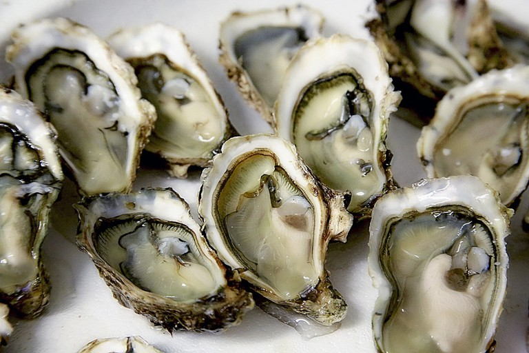 oyster-1522835_1280