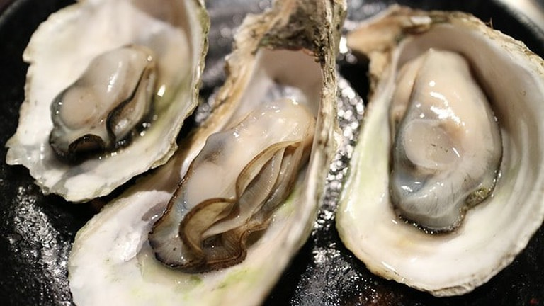 oyster-989182_640