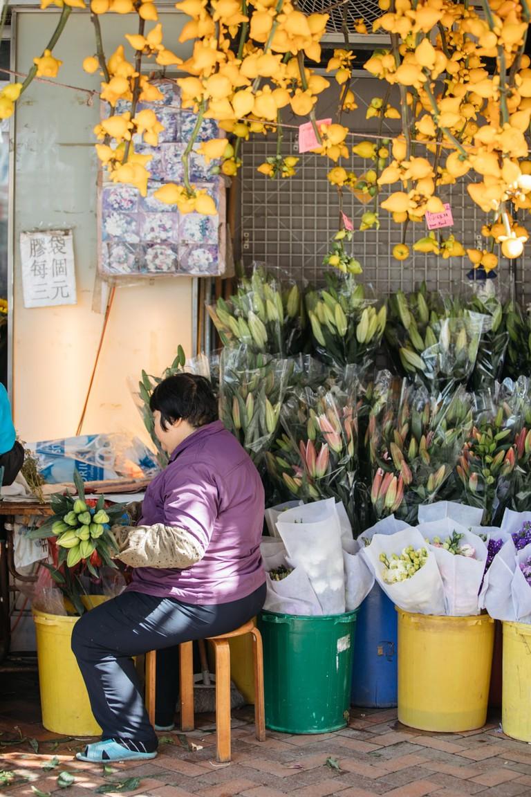 SCTP0099-LO-HONG KONG-FLOWER-00056