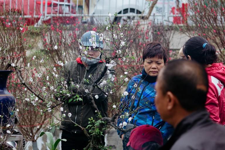 SCTP0126-Abasnejad-Flower Market-00037