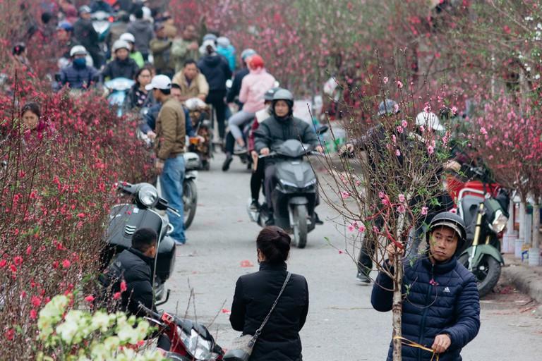 SCTP0126-Abasnejad-Flower Market-00042