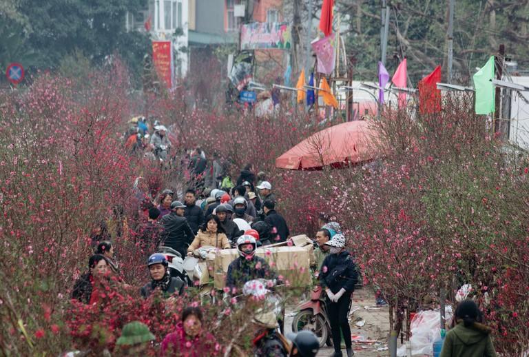 SCTP0126-Abasnejad-Flower Market-00045