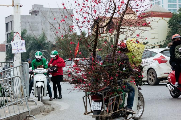 SCTP0126-Abasnejad-Flower Market-00053