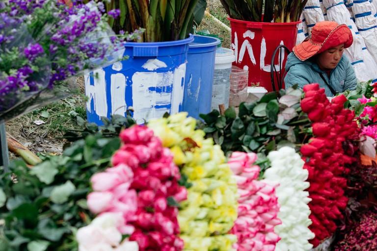 SCTP0126-Abasnejad-Flower Market-00057