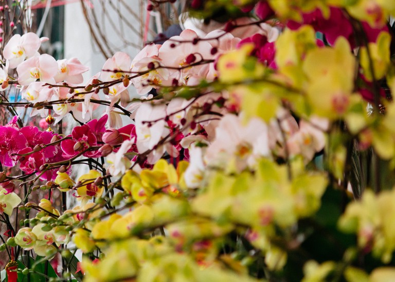 SCTP0126-Abasnejad-Flower Market-00066