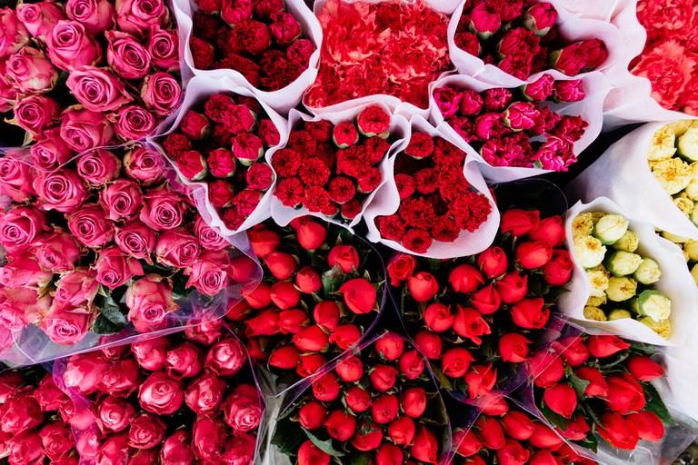SCTP0126-Abasnejad-Flower Market-00068