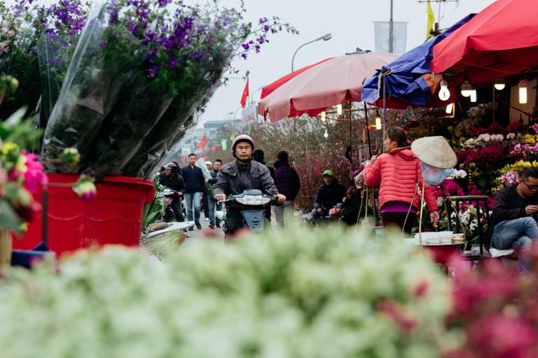 SCTP0126-Abasnejad-Flower Market-00081