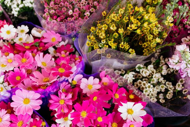 SCTP0126-Abasnejad-Flower Market-00085