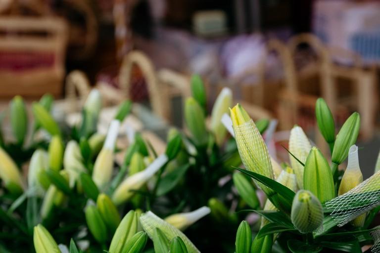 SCTP0126-Abasnejad-Flower Market-00088