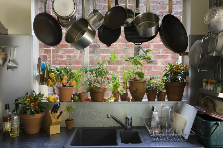 Saucepans hanging over sink against potted plants on window sill in domestic kitchen | © sirtravelalot/Shutterstock