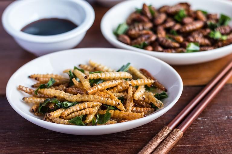 Bamboo worm insect | © Charoenkrung.Studio99/Shutterstock