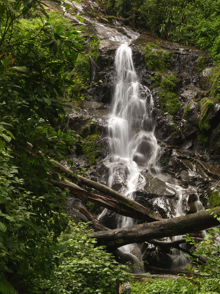 Waterfall in Nyungwe National Park | Courtesy of Rwanda Development Board