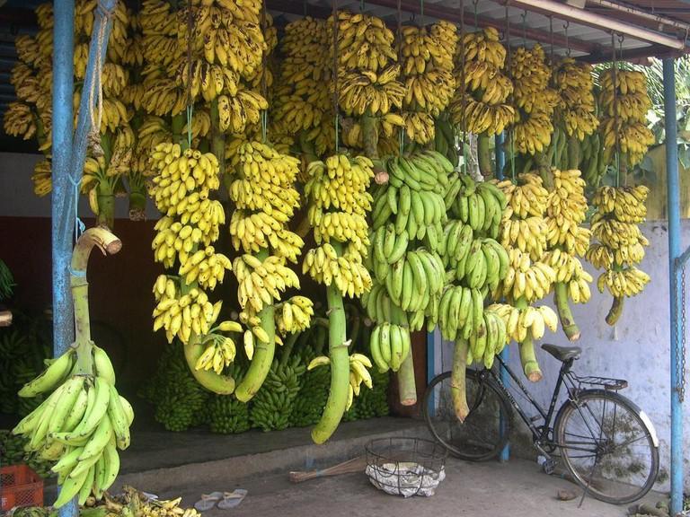 3.bananas_