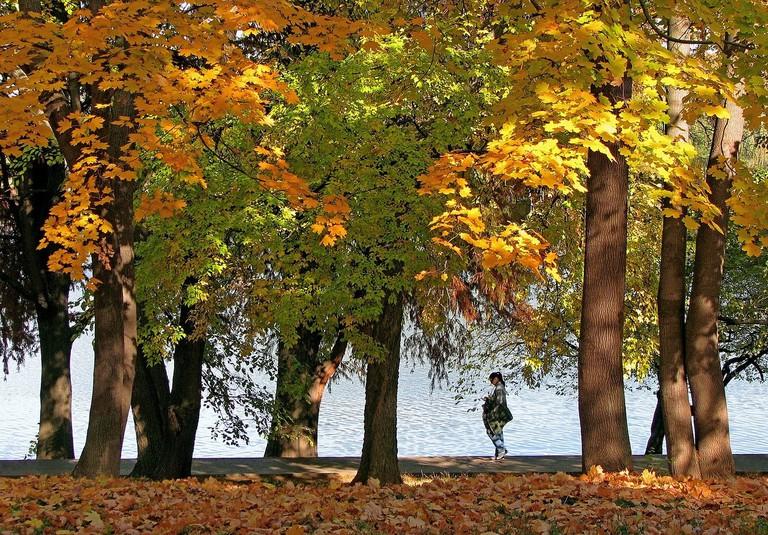 autumn-landscape-1021513_1280
