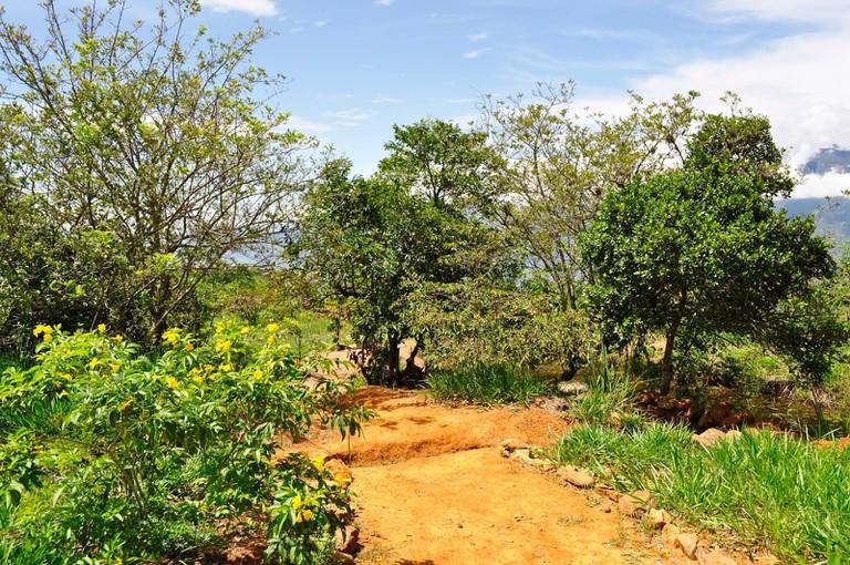 bioparque moncora barichara