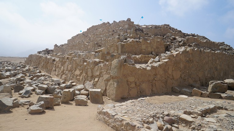 caral-2396652_1280 (1)