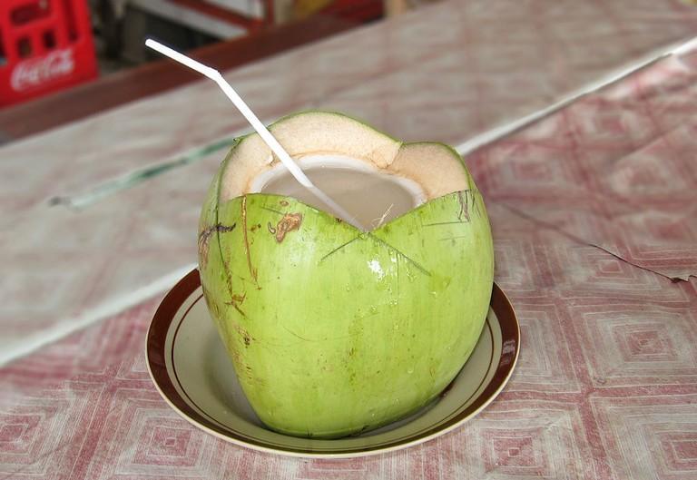 Coconut Water Crisco 1492 WikiCommons