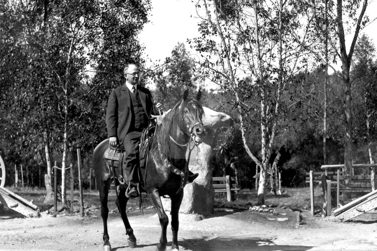 DrHarry on horse