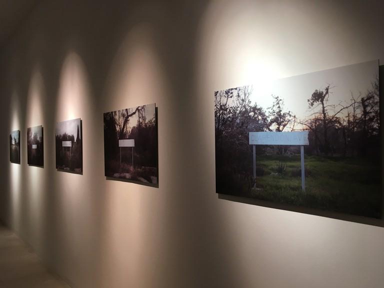 Efi Savvides installation view