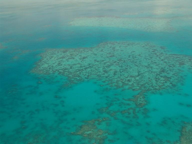 great-barrier-reef-261707_1920