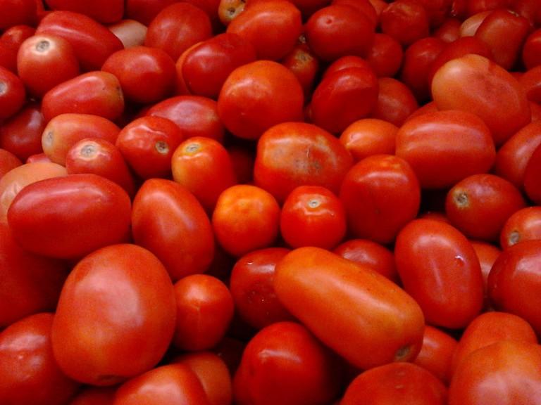 Indian Tomatoes Aravind Sivaraj WikiCommons