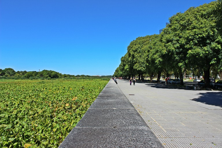 The Costanera Sur, Buenos Aires