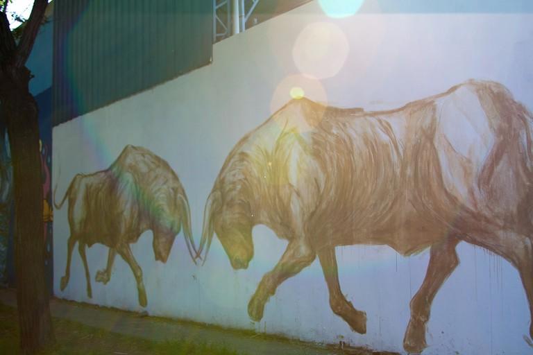 Street art in the Colegiales neighbourhood
