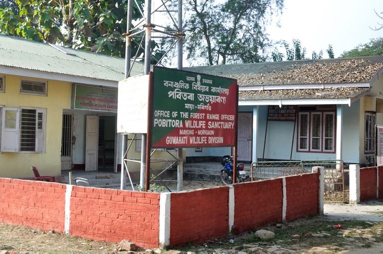 Pobitora_Wildlife_Sanctuary,_Assam,_India_(5).v1