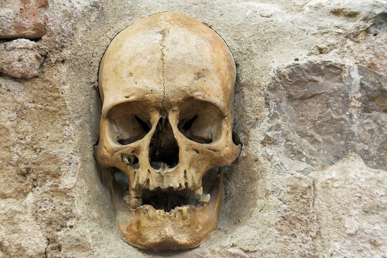Skull from skull tower in Nis - Serbia