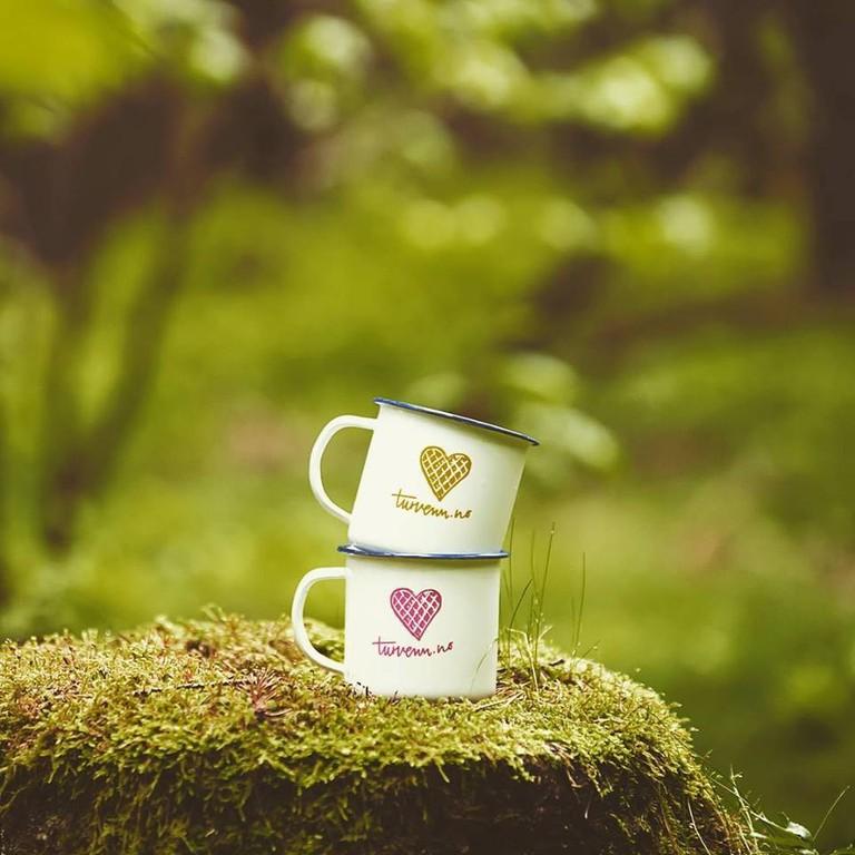 turvenn cups