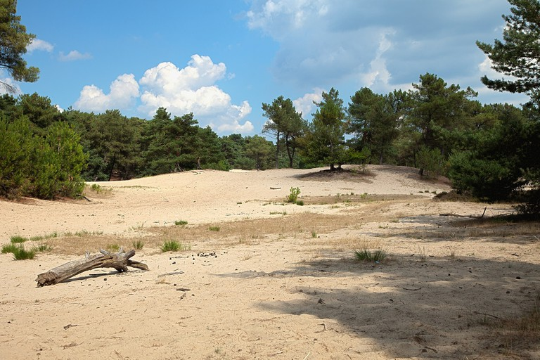 dune park 3