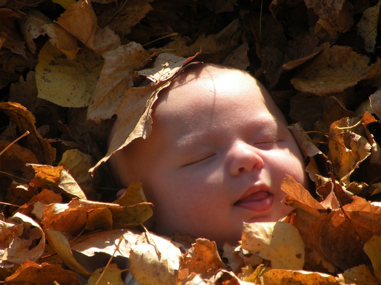 Peaceful baby in autumn leaves